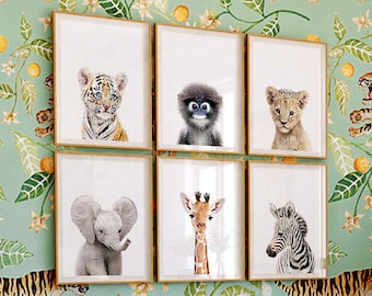 fd9f075a4b9 Safari nursery decor