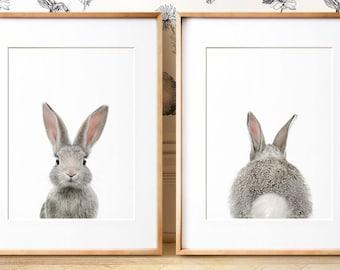 Set of 2 bunny prints, PRINTABLE wall art, The Crown Prints, Nursery art, Woodland animals, Nursery art, Baby animal prints, Nursery TCP104_