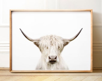 Highland Cow Print PRINTABLE Art Trendy Wall Animal Photography The Crown Prints Large Nature Rustic
