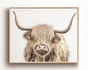 Cow art | Etsy