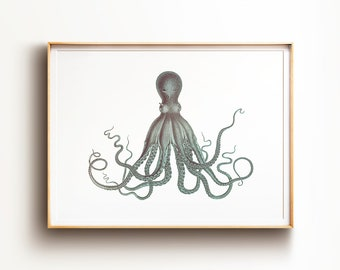 graphic about Printable Octopus referred to as Octopus print Etsy