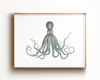 picture regarding Octopus Printable referred to as Octopus printable Etsy