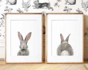Set Of 2 Bunny Prints PRINTABLE Wall Art The Crown Nursery Woodland Animals Baby Animal