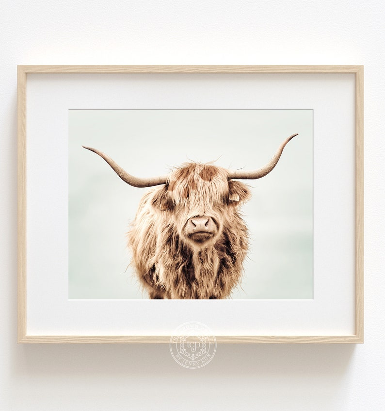 Highland cow print DIGITAL DOWNLOAD Hairy cow poster image 0