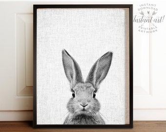 Rabbit print, Woodland Animals art, PRINTABLE art, Bunny print, Rabbit photo, Animal photography, Nursery decor, Nursery prints, Wall art
