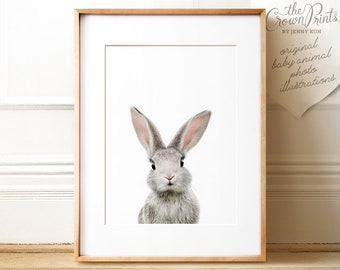 Bunny print, PRINTABLE art, Animal print, Baby rabbit print, Nursery decor, Animal art, Baby animals, Nursery wall art, The Crown Prints