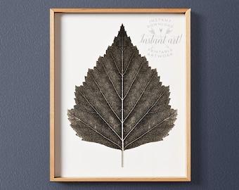 Leaf print, PRINTABLE art, Birch tree print, Sepia print, Modern art, Wall art print, Nature print, Autumn decor, Fall decor, Autumn art