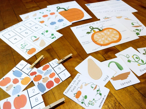 Pumpkin Themed Printable Activity Package Life Cycle and