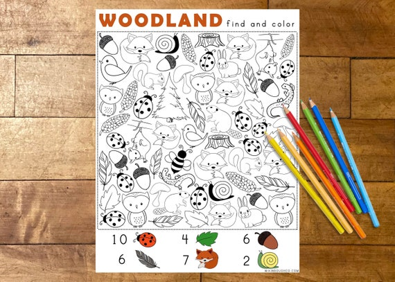Find and Color Woodland Activity Printable Coloring Page for