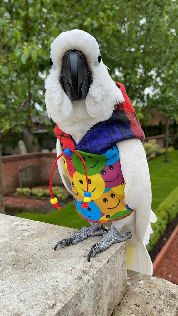 Pet bird parrot 'HIGHLAND SMILE' hoodie - all sizes available - petite to large