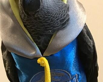 Pet parrot bird dinosaur film hoodies - all sizes Petite to Large
