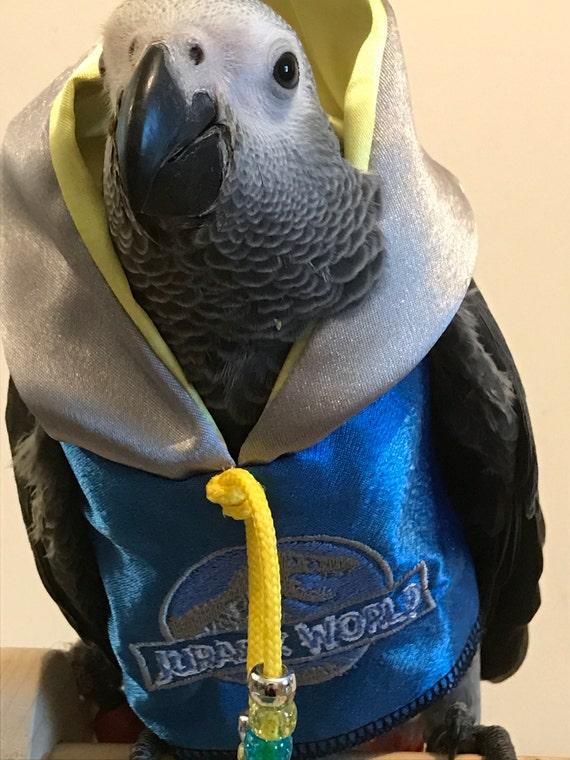 Pet Parrot Bird Dinosaur Film Hoodies All Sizes Petite To Etsy