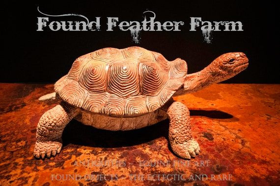 Large Resin and Rubber Land Tortoise Figurine