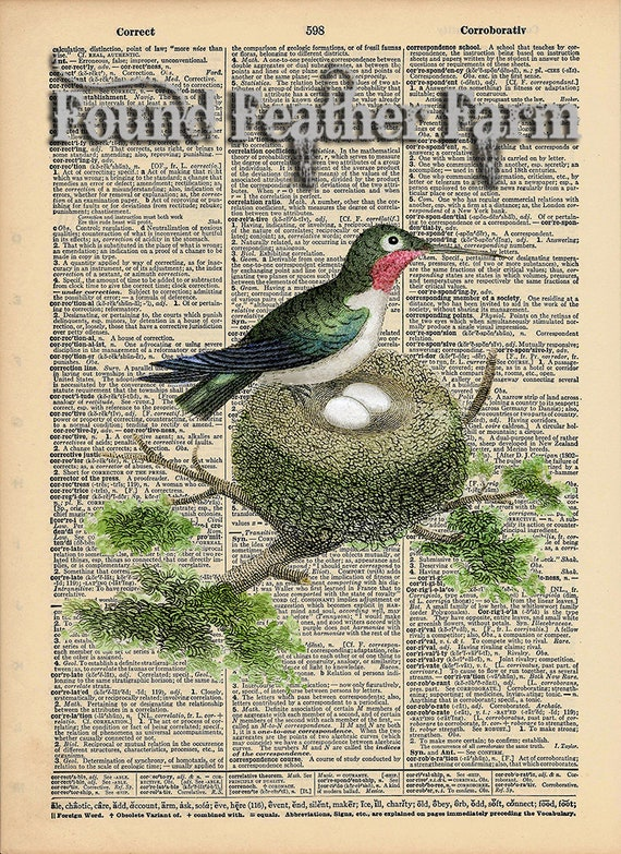 """Vintage Antique Dictionary Page with Antique Print """"Ruby Throated Hummingbird"""""""
