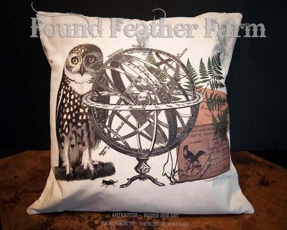"18"" x 18"" Canvas Throw Pillow ""The Meridian Owl"" Original Design with Feather Down Insert"