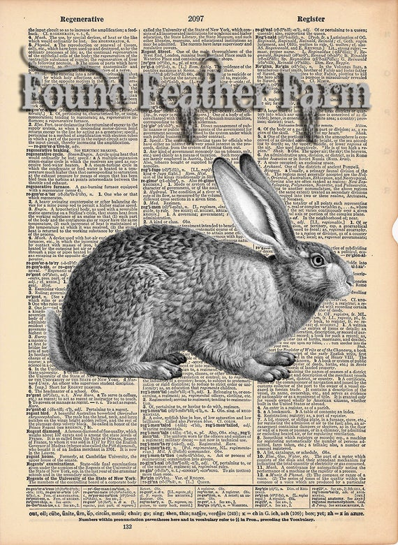 """Vintage Antique Dictionary Page with Antique Print """"Vintage Rabbit Etching"""""""