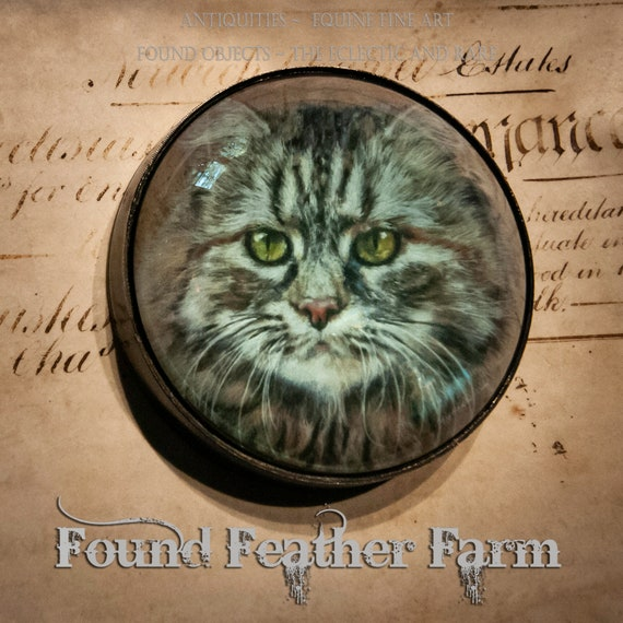 Vintage Large Antique Brass Round Dome Handmade Paperweight with A Beautiful Feline Image