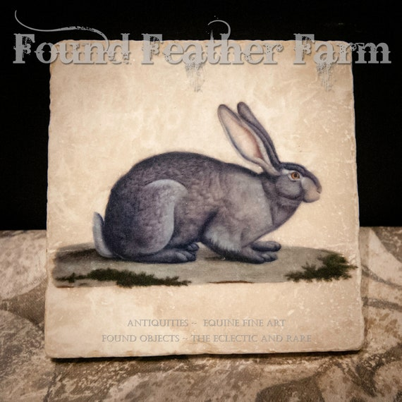Tumbled Marble Coasters with Vintage French Hare Images