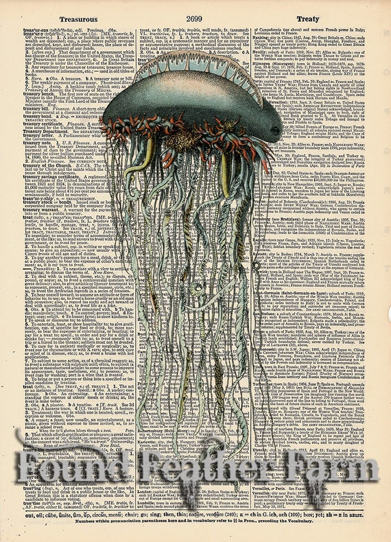 """Vintage Antique Dictionary Page with Antique Print """"Jellyfish"""""""