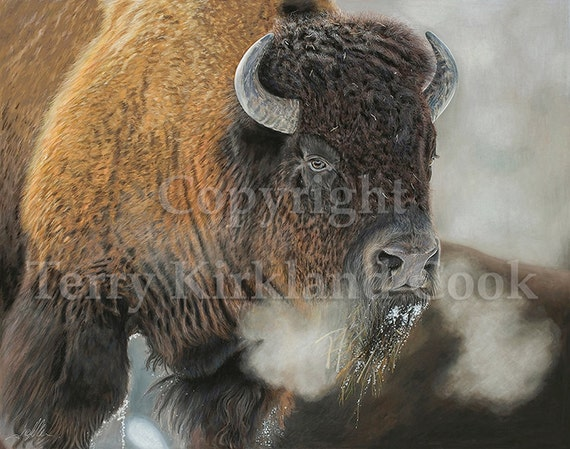 Thunder Beast ~ Copyrighted Fine Art Giclee Print by Terry Kirkland Cook
