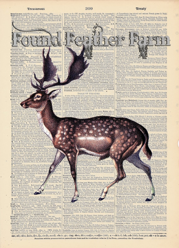 """Vintage Antique Dictionary Page with Antique Print """"Fallow Deer"""""""