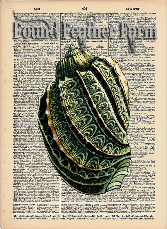 """Vintage Antique Dictionary Page with Antique Print """"Shell One"""""""