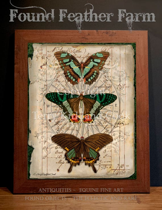 "Butterfly Trio ~ Original Vintage Art Collage 20"" x 24""Framed Giclee Print"