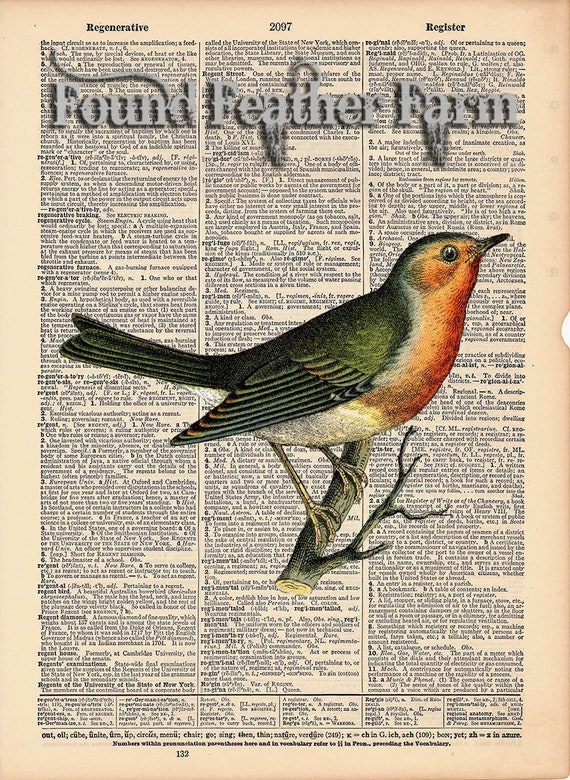 """Vintage Antique Dictionary Page with Antique Print """"Red Robin"""""""