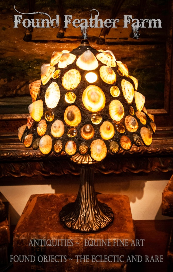 Fabulous One of a Kind Handmade Limpet Shell Accent Lamp with an Original Design