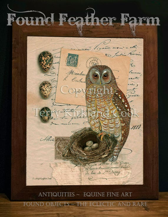 "The Owl Nest and Eggs ~ Original Vintage Art Collage 20"" x 24"" Framed Giclee Print"
