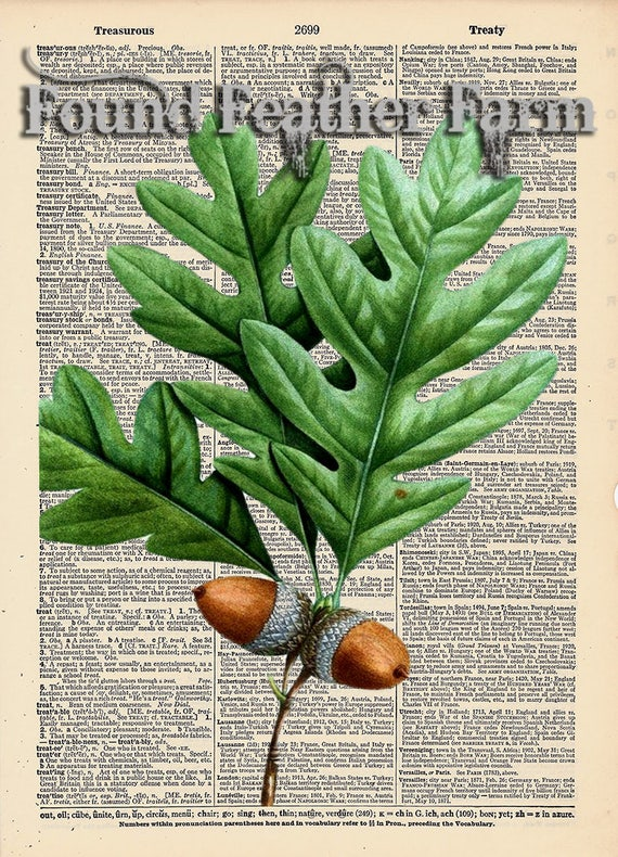 """Vintage Antique Dictionary Page with Antique Print """"Acorns and Oak Leaves"""""""