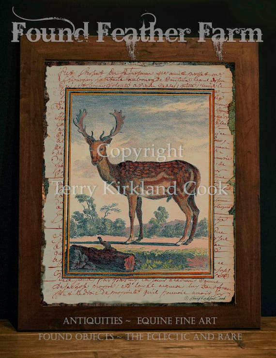 "The English Fallow ~ Original Vintage Art Collage 20"" x 24"" Framed Giclee Print"