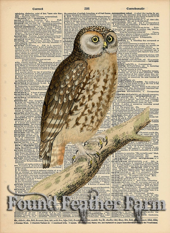 "Vintage Antique Dictionary Page with Antique Print ""Owl On a Branch Two"""