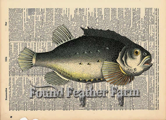"""Vintage Antique Dictionary Page with Antique Print """"Fish"""""""