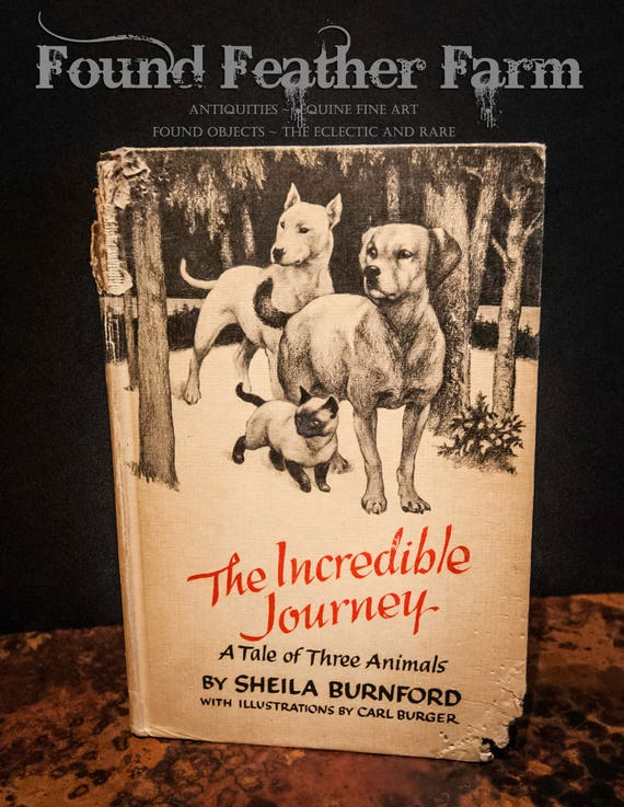 Vintage Children's Book The Incredible Journey from 1960