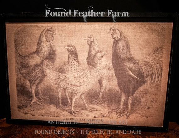 Wood Framed Primitive Chicken Print Giclee on Linen Canvas