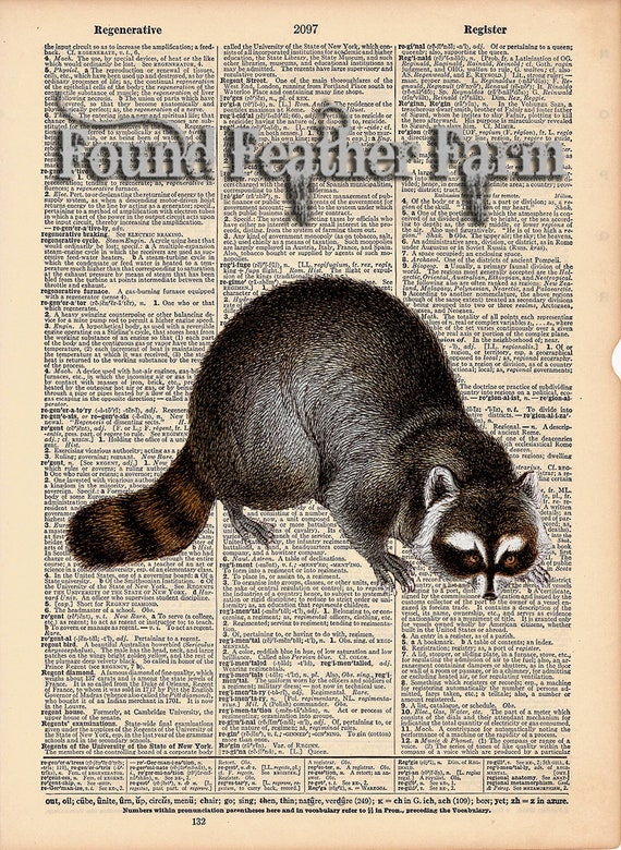 """Vintage Antique Dictionary Page with Antique Print """"Raccoon Print"""""""