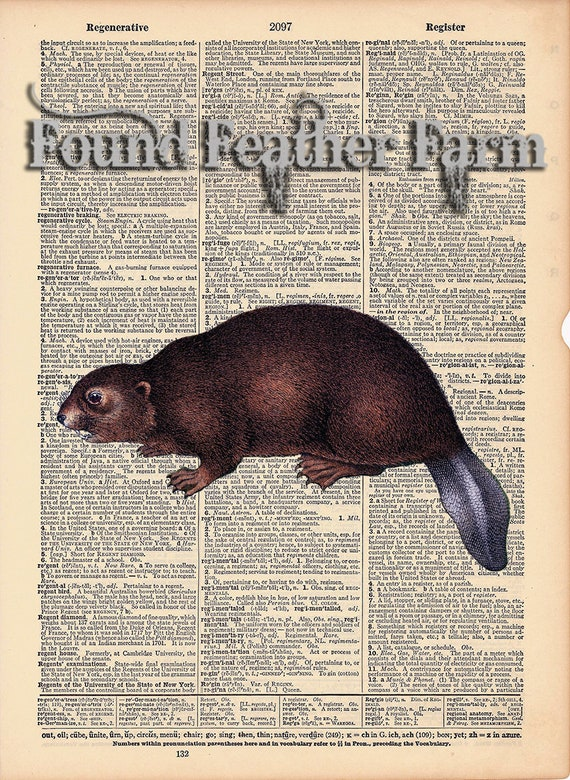 "Vintage Antique Dictionary Page with Antique Print ""Woodland Beaver"""