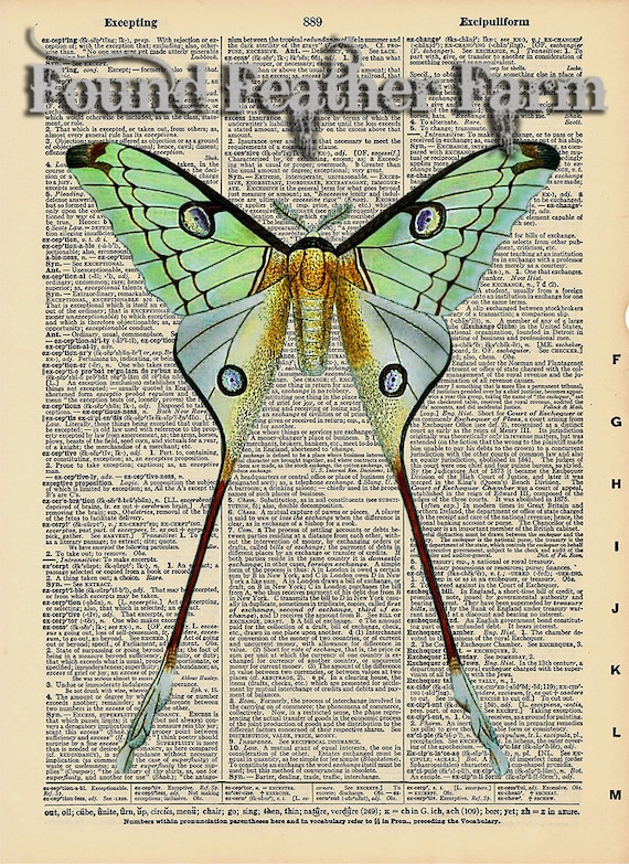 "Vintage Antique Dictionary Page with Antique Print ""Luna Moth"""