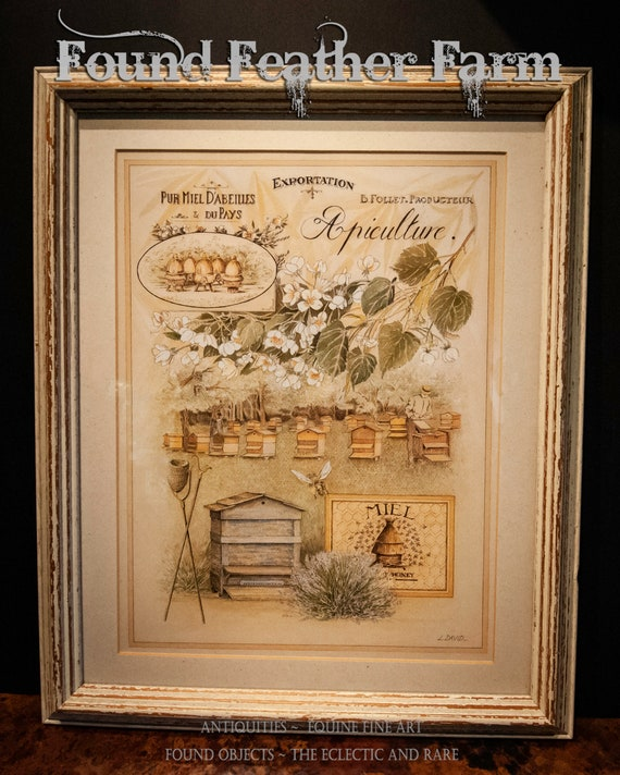 Vintage French Honey Bee Apiculture Framed Print