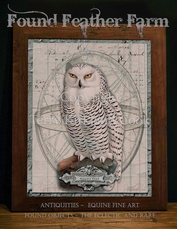 "Snowy Owl ~ Original Vintage Art Collage 20"" x 24"" Framed Giclee Print"