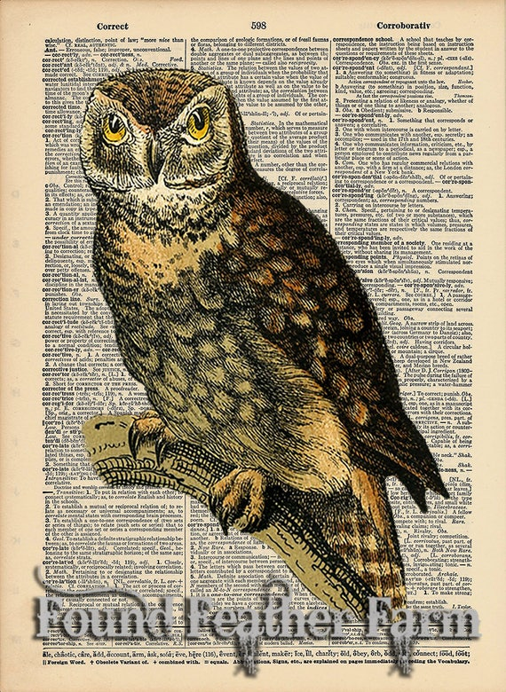 """Vintage Antique Dictionary Page with Antique Print """"Owl On Branch Four"""""""