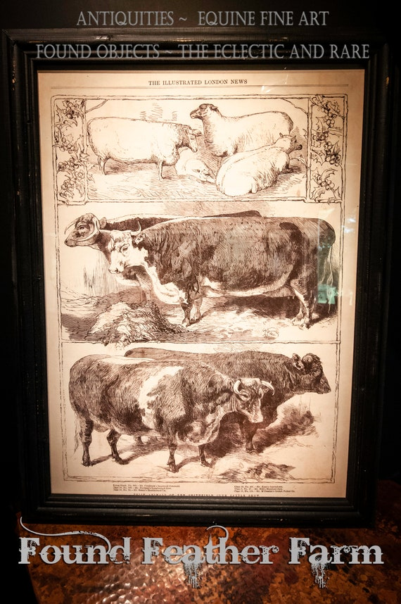 Wood Framed Farm Animals Cows and Sheep Sepia Reproduction Print Under Glass