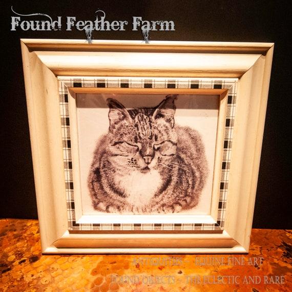 Framed Sleeping Cat Print