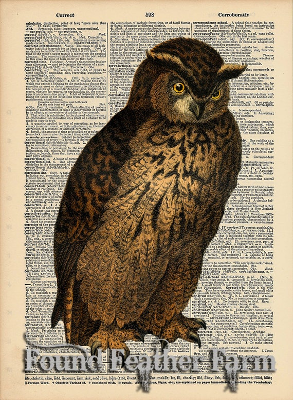 "Vintage Antique Dictionary Page with Antique Print ""Owl Five"""