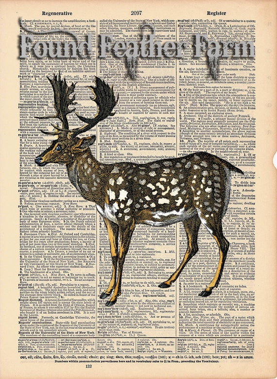 "Vintage Antique Dictionary Page with Antique Print ""Spotted Fallow Deer"""