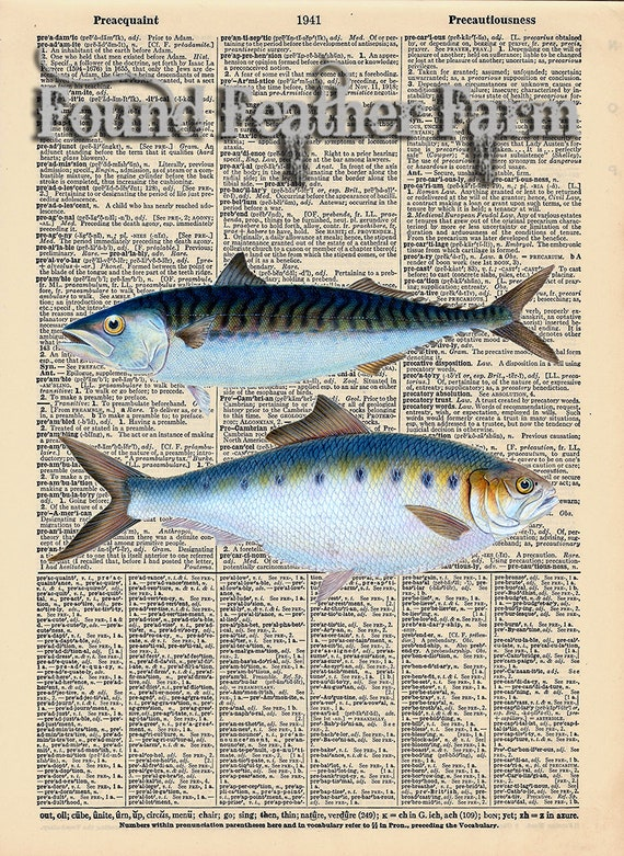 "Vintage Antique Dictionary Page with Antique Print ""Two Ocean Fish"""