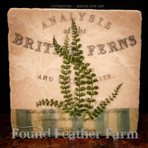 Tumbled Marble Stone Coasters with Vintage British Fern Images