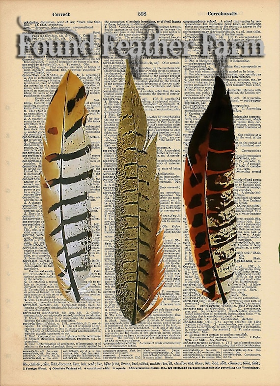 """Vintage Antique Dictionary Page with Antique Print """"Three Feathers"""""""