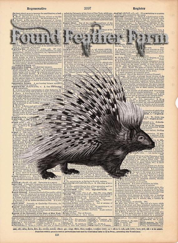"Vintage Antique Dictionary Page with Antique Print ""Porcupine"""